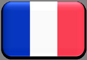 FRANCESE – ELEMENTARE – ORLEANS 2